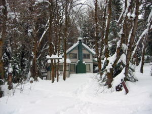 snowshoe-4.jpg