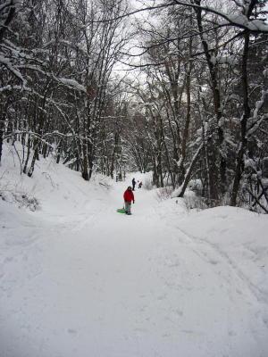 snowshoe-6.jpg