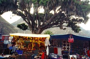 andys-picture-1997-pisac-tree-and-market