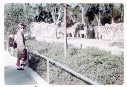 san diego zoo january 1969